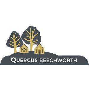 Quercus Beechworth